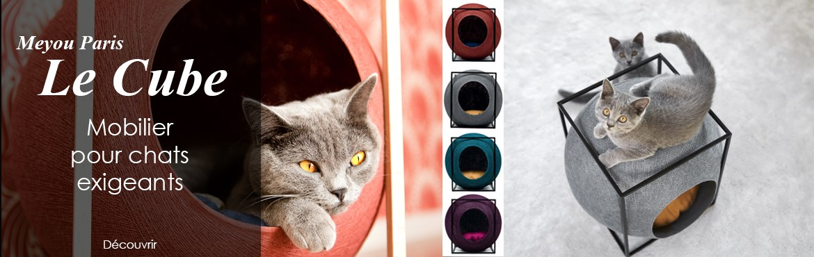 Mobilier pour chats exigeants